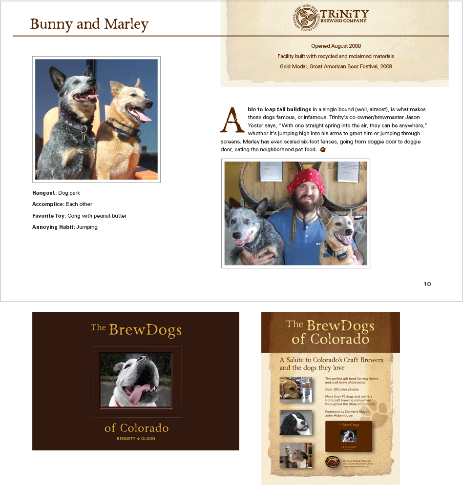 Brew Dogs of Colorado Book Design by Moving Pixels Creative - Colorado Graphic Design and Web Design